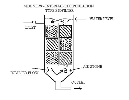 BIOLOGICAL FILTERS FOR AQUACULTURE